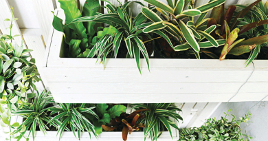 Simple tips for an eco-friendly home