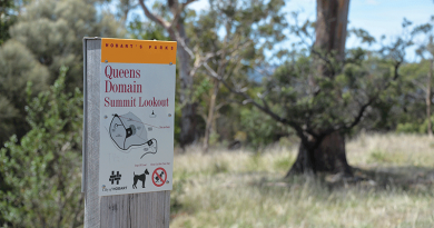 Queens Domain summit reaches new heights
