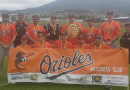 Hobart Summer Baseball League: season wrap up